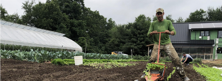 Tending the Roots of Lean with Lean Farmer Ben Hartman