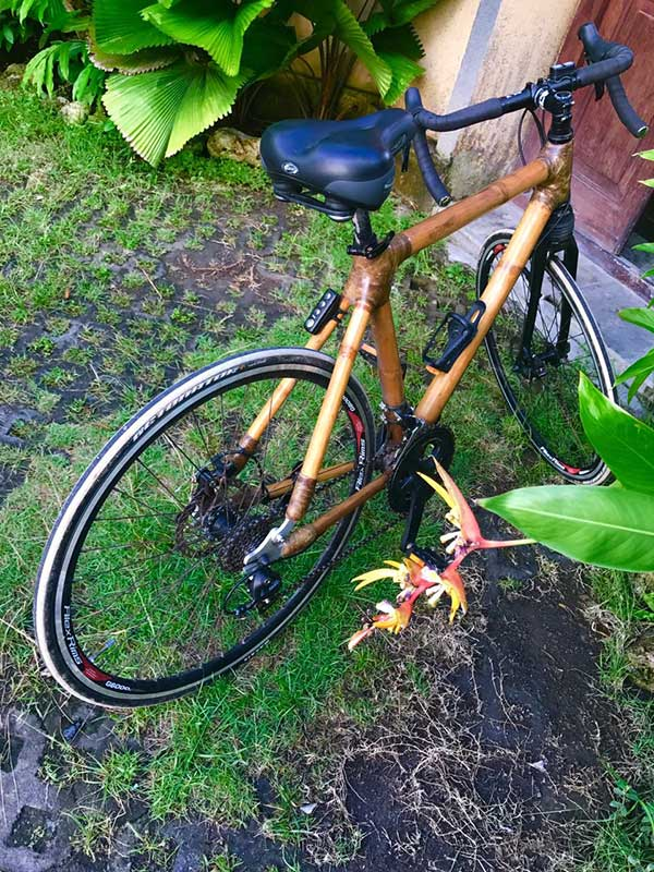 EWABI, Earth Corporations (E-CORPS) & Electric Bamboo Bikes