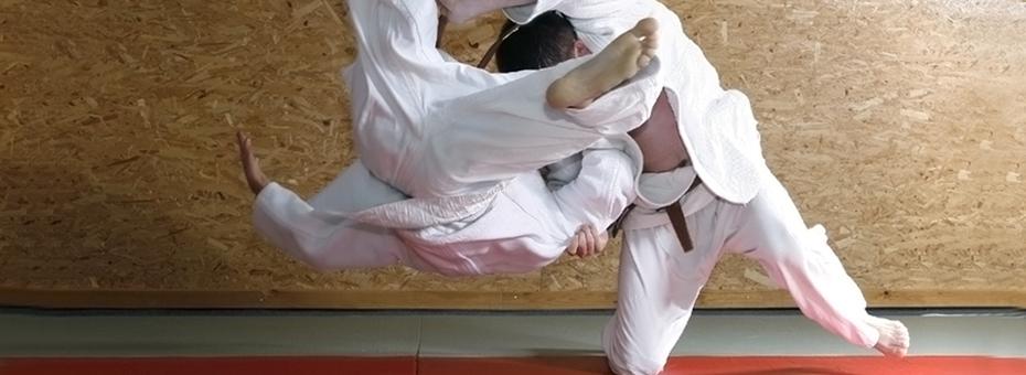 Think Like Judoka