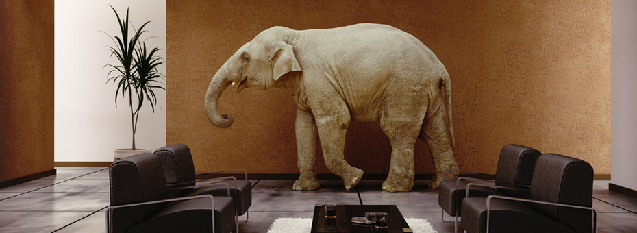 Bad Data: The Elephant in the Room