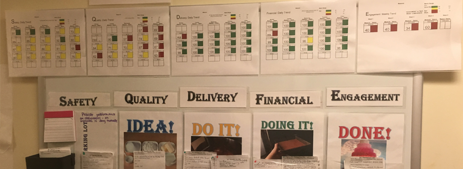 Making Things Better – Visual Value in Health Information Management