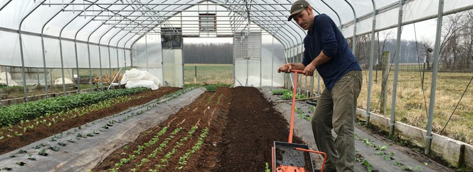 The Lean Farm: Better Food, Productivity, and Profits — with Less Work