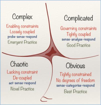 Vynrfin framework