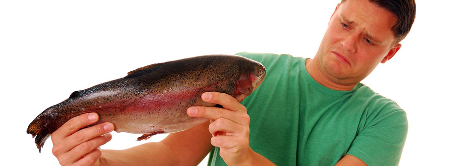 What To Do When Executives Think Continuous Improvement Smells Fishy