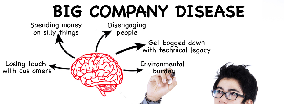 The Five Poisons of Big Company Disease