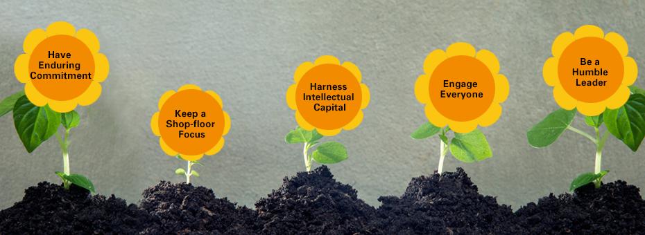 """Out of Fertile """"Pre-Lean"""" Soil Bloom Lean Leaders"""