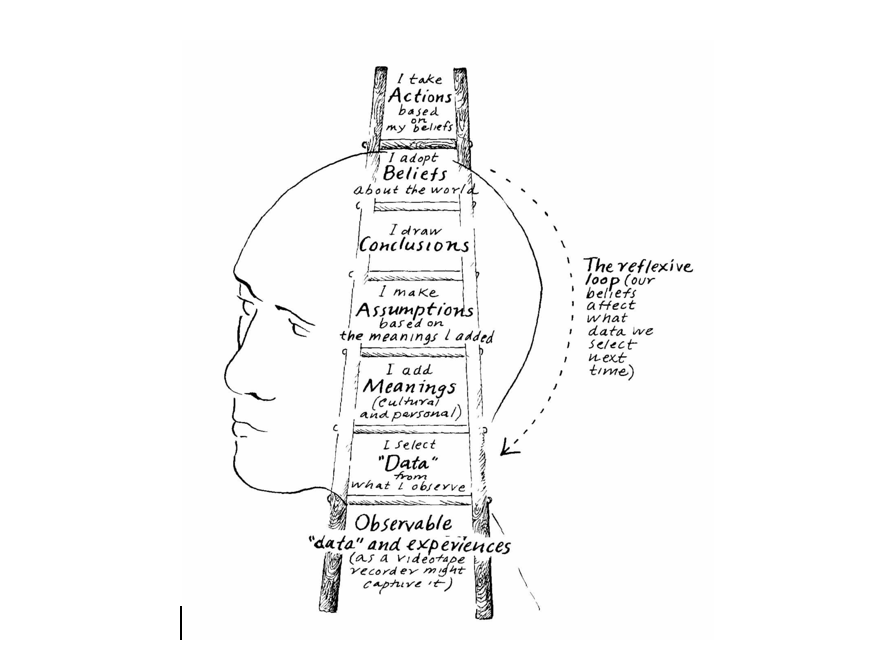 The Ladder of Inference