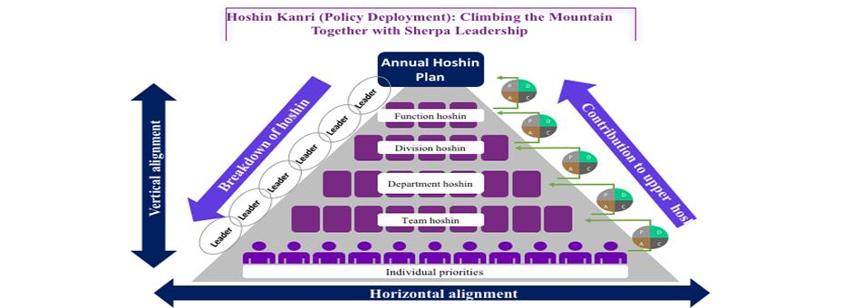 hoshin mental model