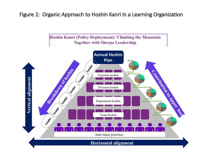 Organic approach to Hoshin Kanri in a Learning Organization